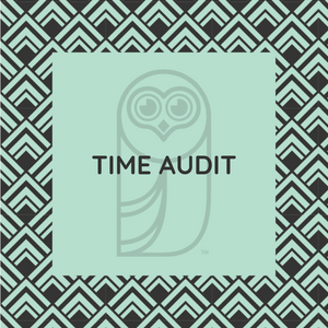Time Audit