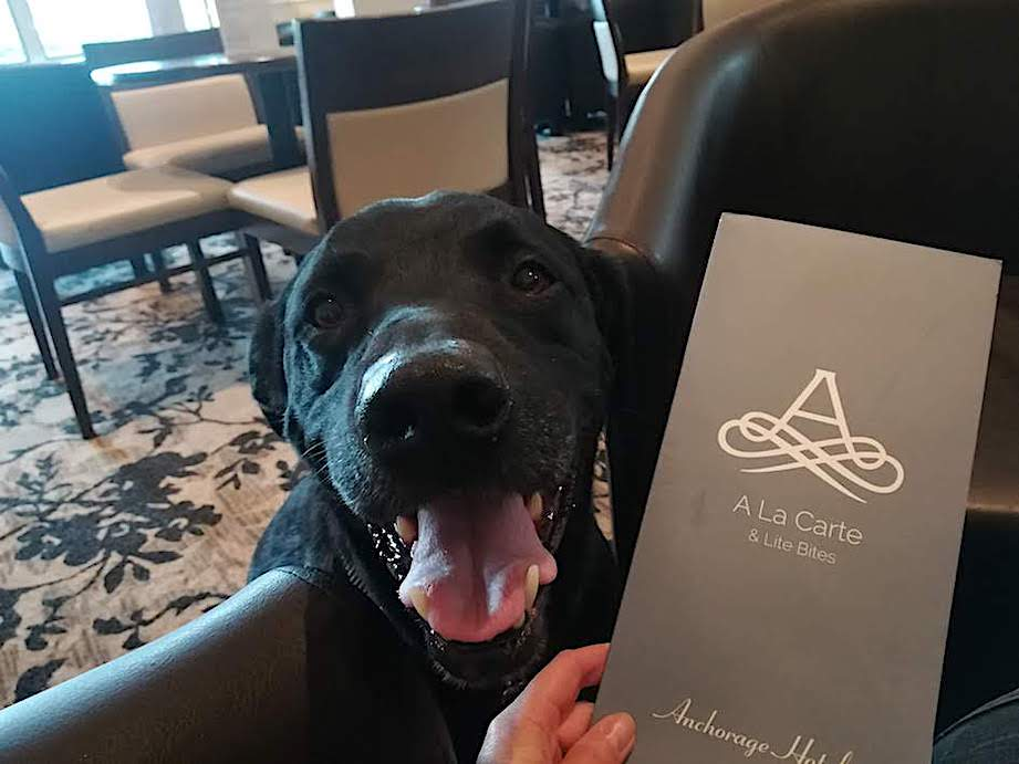 Dog-friendly Anchorage Hotel