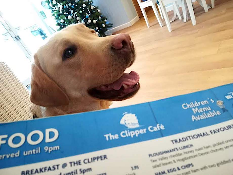 Larry enjoying his visit to The Clipper Cafe