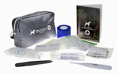 first aid kit for treating dogs