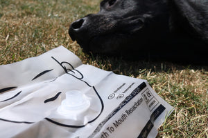 Resuscitation mask for use on dog following accident