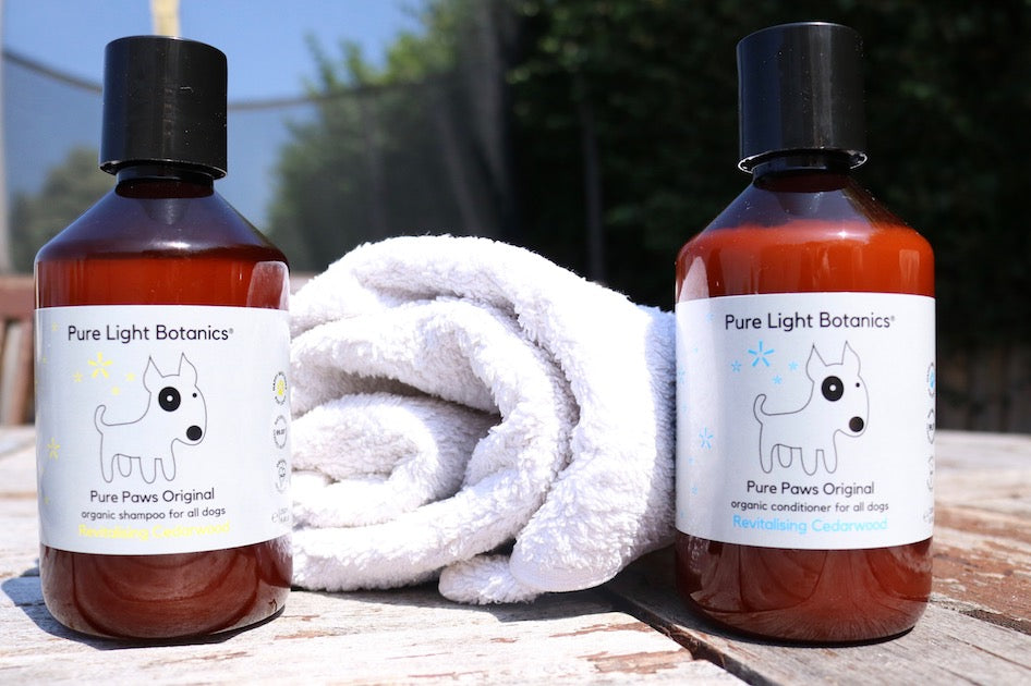 Shampoo and Conditioner Set for Dogs - Pure Paws Original Organic Revitalising Cedarwood (250ml)