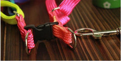 Adjustable Harness Collar Leash for Pets