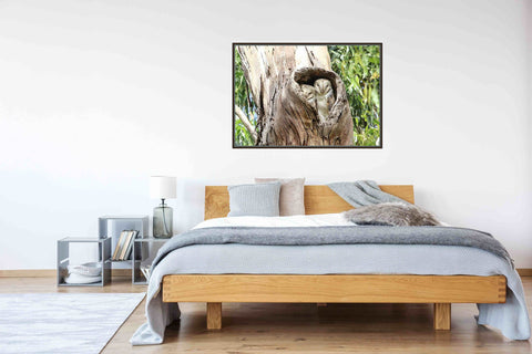 Eastern Barn Owl Ready To Hang Wall Art