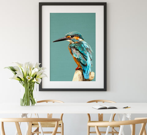 Kingfisher Framed Linen Art Print