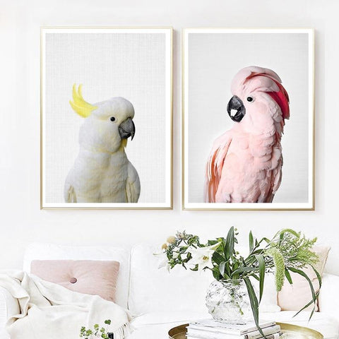 Pink Cockatoo and Sulphur Crested Cockatoo Pair Wall Art
