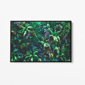 Green Wall - Botanical Nature Stretched Canvas Wall Art Print I Heart Wall Art Australia