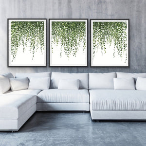 Hanging Ivy - Three Piece Art Print  of Hanging Ivy Wall Art I Heart Wall Art Australia