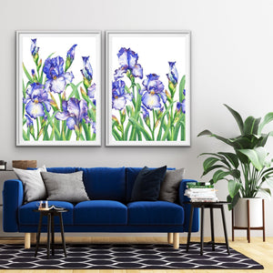 Iris Garden - Two Piece Iris Blue Flower Watercolour Stretched Canvas Framed Wall Art I Heart Wall Art Australia