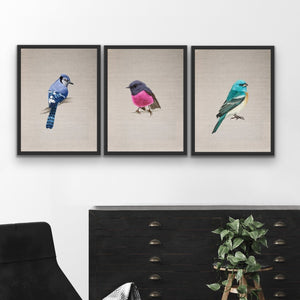 Little Gem Birds - Three Piece Watercolour Bird Wall Art On Canvas I Heart Wall Art Australia