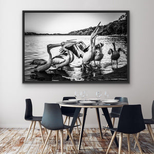 Pelicans On The Beach - Black and White Coastal Landscape Framed Canvas Print Wall Art Print I Heart Wall Art Australia