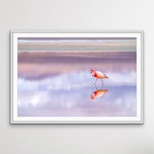 Pink Flamingo Beach -  Coastal Landscape Pink Flamingo Sunset Canvas or Art Print I Heart Wall Art Australia