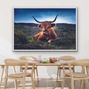 Resting Highlander - Highland Cow Landscape Framed Canvas Print Wall Art Print I Heart Wall Art Australia