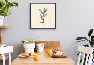 Sweet Eucalyptus Watercolour Art Print I Heart Wall Art Australia
