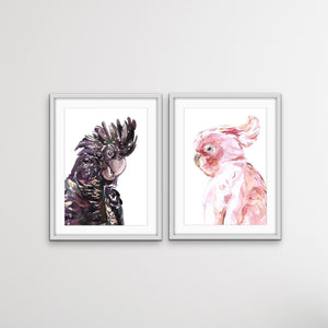 Watercolour Cockatoo Pair  - Two Piece Black and Pink Cockatoo Prints I Heart Wall Art Australia