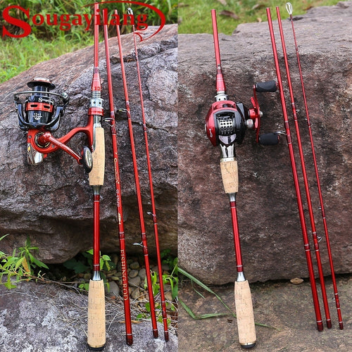 2 Types of Choice Fishing Spinning or Fishing Casting Combo for Trout Salmon Bass Fishing Tackle Kit - OhCoolstule