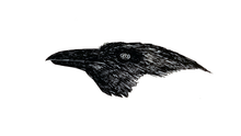 Load image into Gallery viewer, First Come the Ravens/Ensin tulevat korpit / Print [Digital Download]