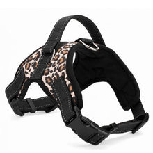 Load image into Gallery viewer, Leopard Dog Pet Harness [product_type] Luxury Dog Bow Ties and Collars - Waggy Ways
