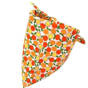 Orange Dog Bandana Fruit Print [product_type] Luxury Dog Bow Ties and Collars - Waggy Ways