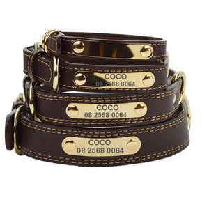 Luxury Leather Dog Collar ID Name Engraved