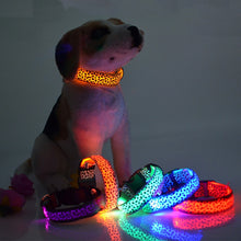Load image into Gallery viewer, Glow in the dark - Adjustable LED Dog Collar