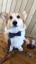 Load image into Gallery viewer, THE BENSON [product_type] Luxury Dog Bow Ties and Collars - Waggy Ways
