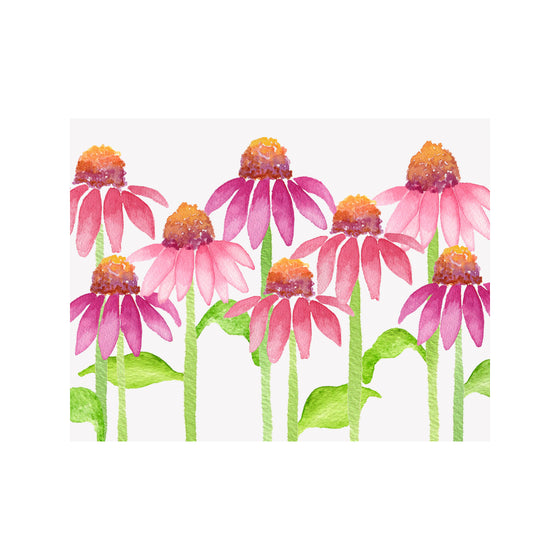 Coneflower Note Cards