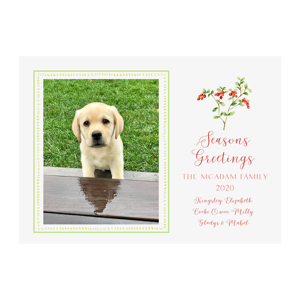 Cranberry Branch Holiday Photo Cards