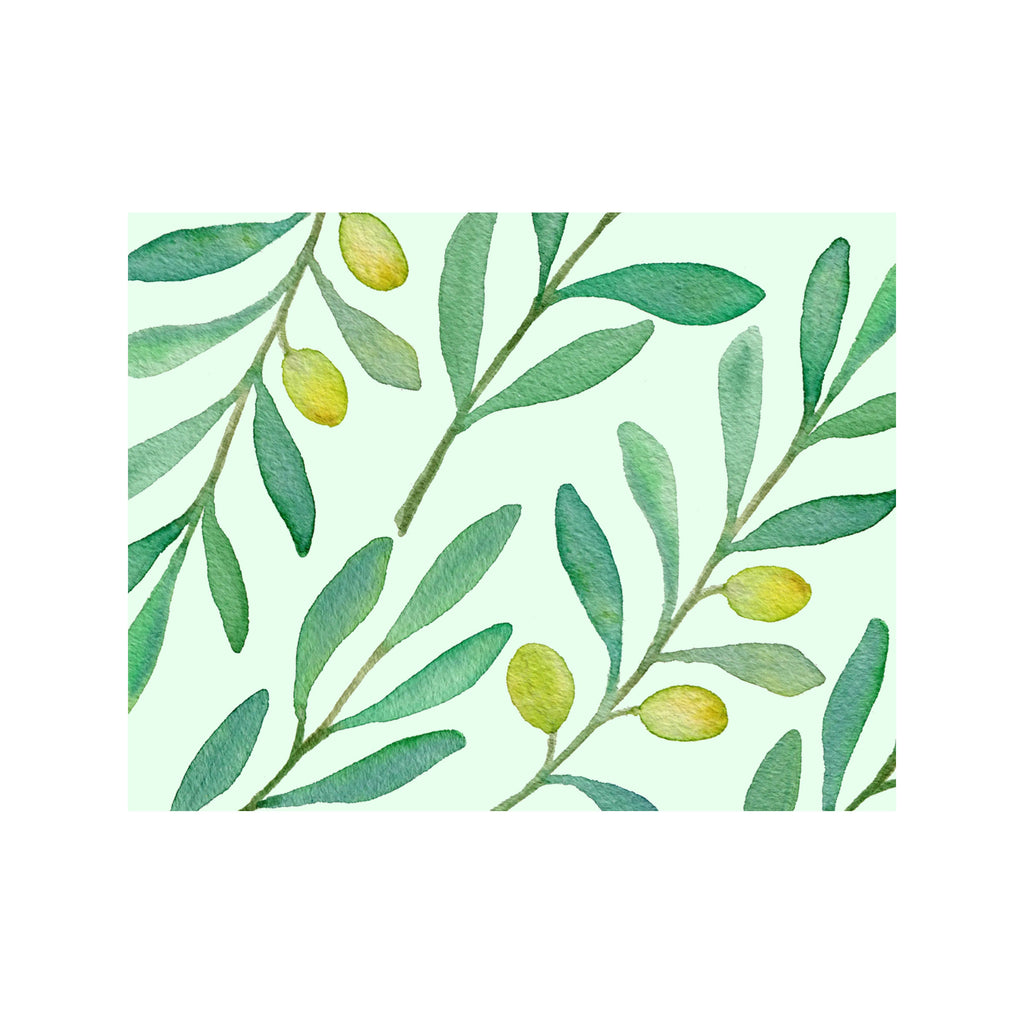Olive Oil Note Cards