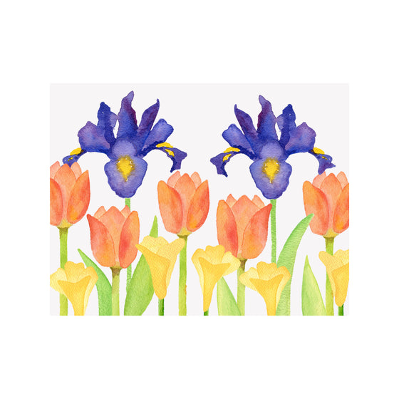 Dutch Iris Note Cards