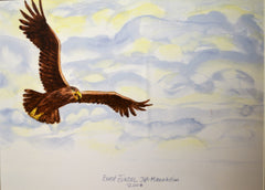 "PRT238 - ""Soaring Eagle"" - Framed Art Print by Artist Ernst Zundel Collection"