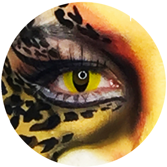 Buy Special Effects (SFX) & Theatrical Costume Makeup Online in NZ
