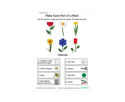 Parts of the plant learning activity