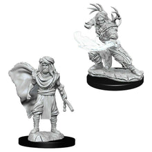 Load image into Gallery viewer, Dungeons & Dragons Nolzur's Marvelous Miniatures: Male Human Druid WZK73390