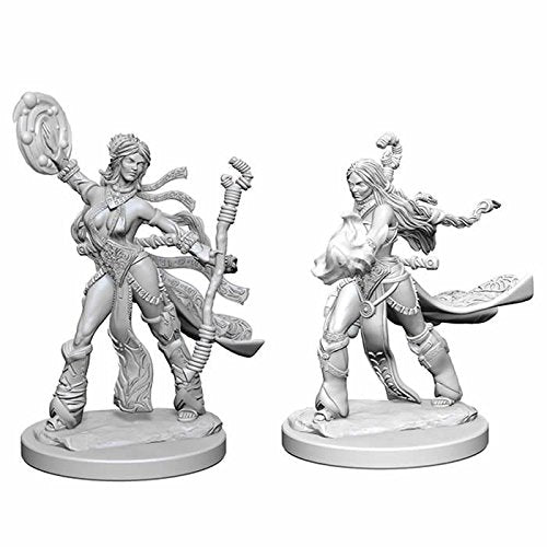 Pathfinder Deep Cuts Unpainted Miniatures: Human Female Sorcerer WZK72604