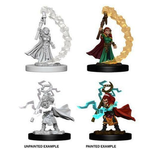 Pathfinder Deep Cuts Gnome Female Sorcerer WZK73345