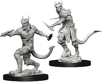 Dungeons & Dragons Nolzur's Tiefling Male Rogue WZK73338