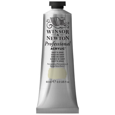Winsor & Newton Professional Acrylic Color Paint, 60ml Tube, Davy's Gray