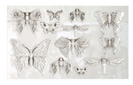 MONARCH 6×10 DECOR IOD MOULDS™