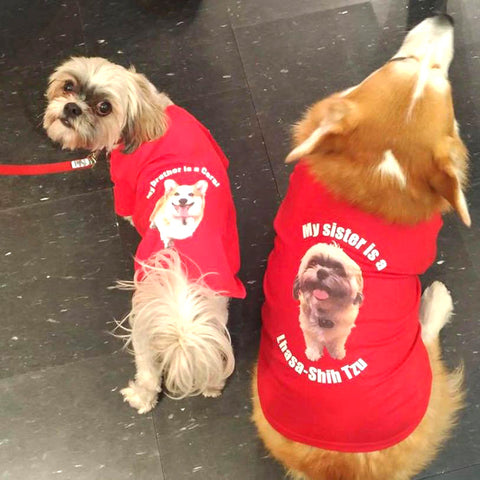 Custom Matching Pet Shirts