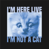 Close up of the meme graphic that says I'm here live, I'm not a cat. Cat Zoom.
