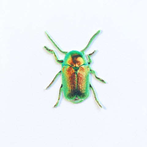 Yellow and Green Beetle Appliqué