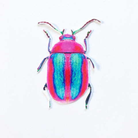 Pink and Blue Beetle Appliqué