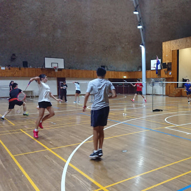 Professional Badminton Training Class