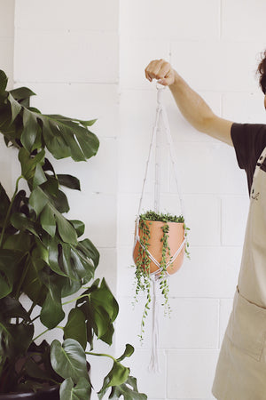 Macrame Hanger Workshop 13/03/21