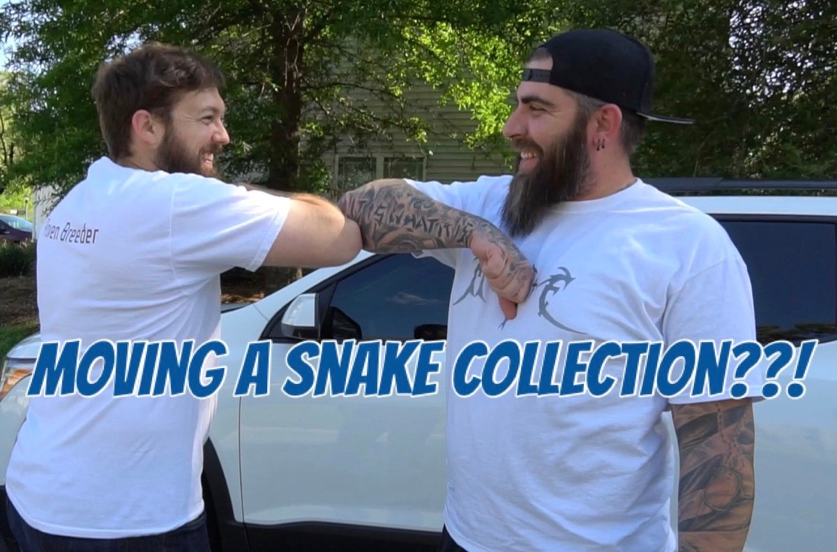 Moving a snake collection??????