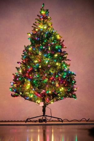Holiday Bright Lights 7.5' Natural Fraser Fir Medium