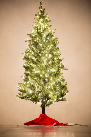 Holiday Bright Lights 7.5' Natural Fraser Fir Slim