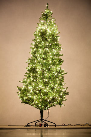 Holiday Bright Lights 9' Natural Fraser Fir Slim