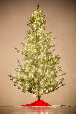 "Holiday Bright Lights 7.5' ""Fresh Cut"" Tree Slim"